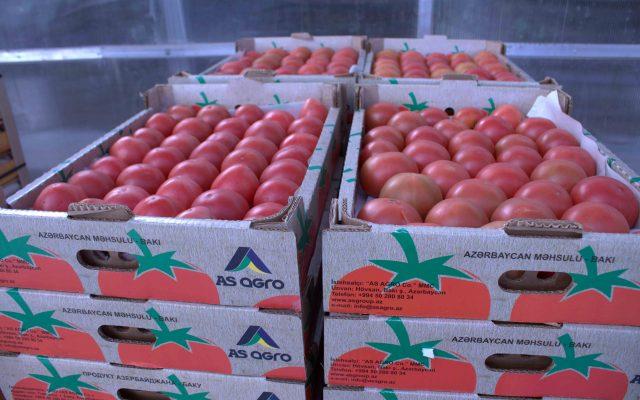 Асагро, сельское хозяйство Азербайджан, упаковка асагро, Сельскохозяйственная продукция, карьера в сельском хозяйстве, экономика сельского хозяйства